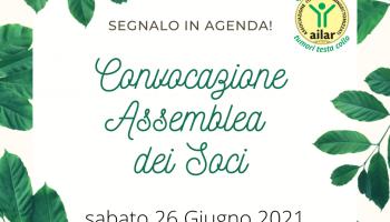SAVE THE DATE: 26 GIUGNO 2021 - ASSEMBLEA NAZIONALE DEI SOCI AILAR-